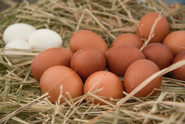 Huevos de Pollos de Corral. Tómales fritos en revuelto o un plato de huevos rotos.
